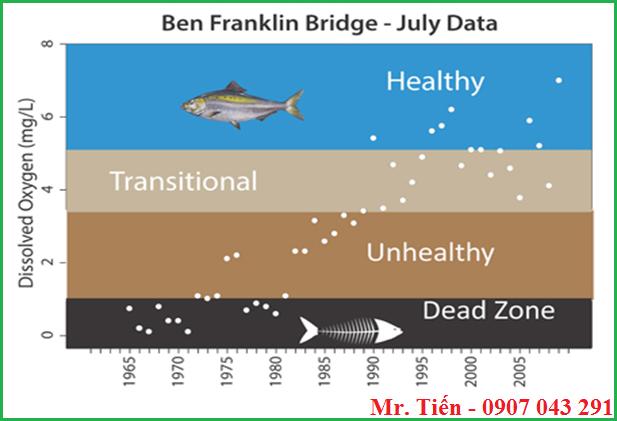 Ảnh hưởng của Oxy hòa tan đến cá
