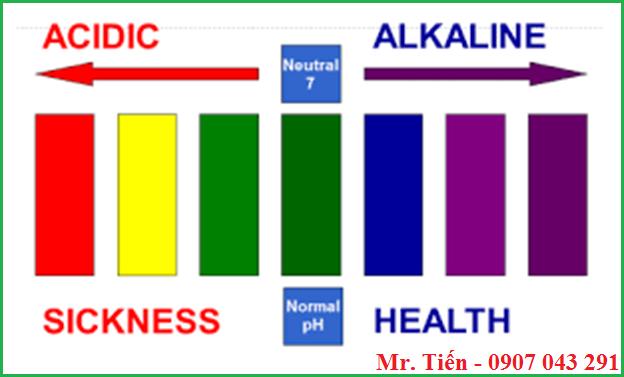 Cân bằng độ pH trong cơ thể người
