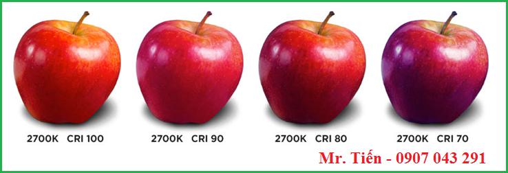 Chỉ số hoàn màu của bóng đèn CRI ảnh hưởng đến màu sắc của mẫu