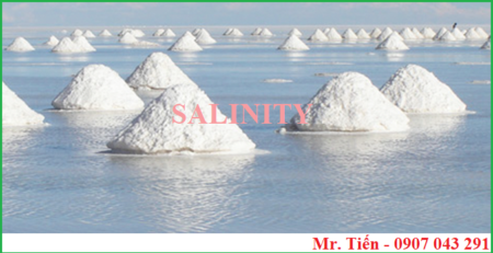 Phương pháp đo nồng độ muối mặn Salinity ở trong nước mắm, nước nuôi tôm cá